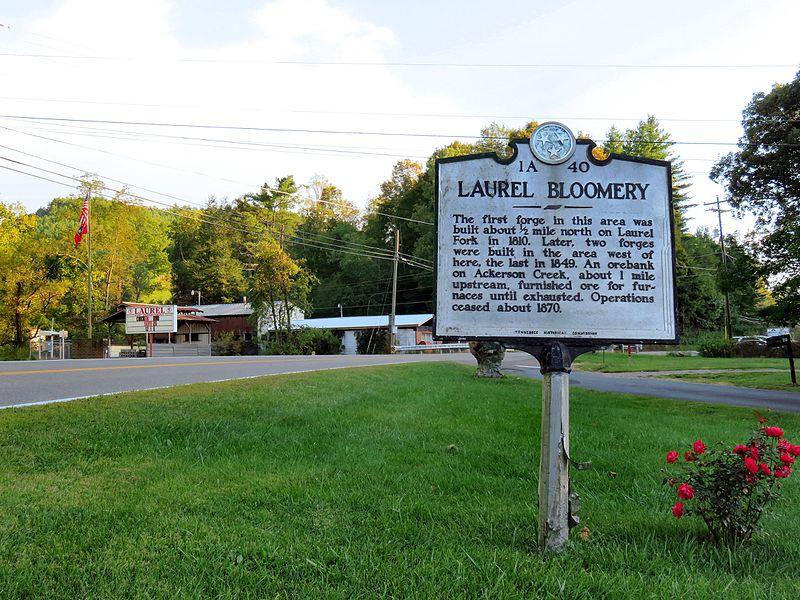 Laurel Bloomery TN